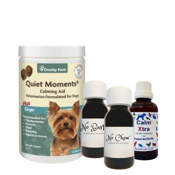 Separation Anxiety All in One: Natural Calmer for Dogs